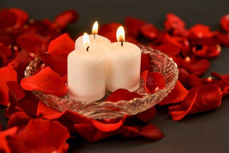tre brinnande stearinljus står i röda rosa kronblad royaltyfria bilder