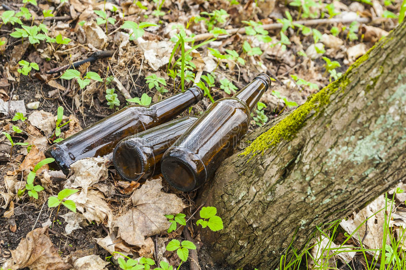 Tre bruna glasflaskor i skog. royaltyfria foton