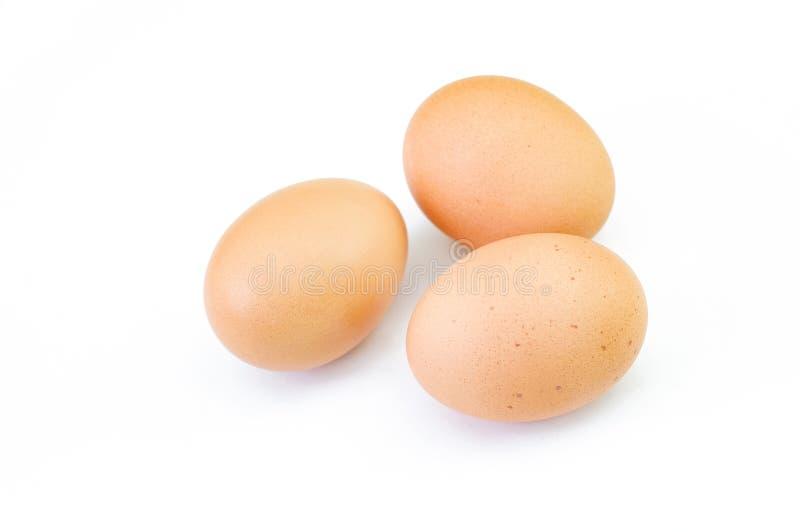 Tre bruna rå ägg som isoleras på vit bakgrund royaltyfria bilder