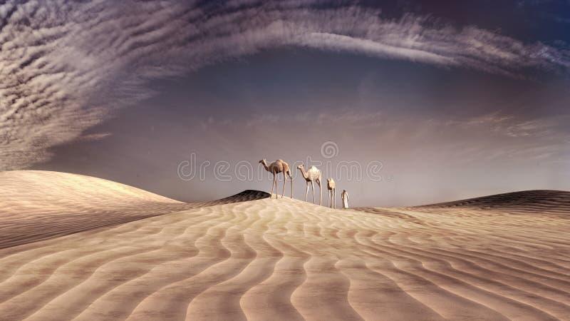 Tre cammelli illustrazione vettoriale