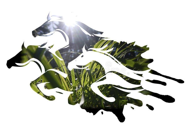 Tre cavalli che passano il prato illustrazione di stock