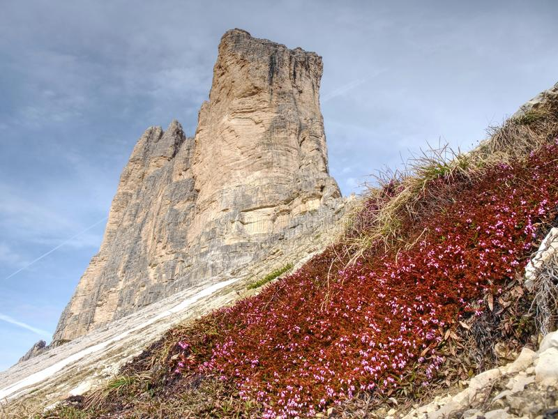 Tre Cime di Lavaredo schaukelt Dolomit Schöne Natur lizenzfreies stockfoto