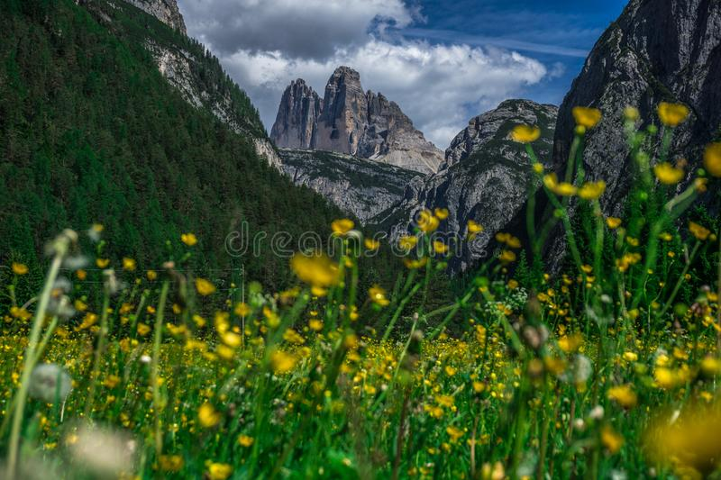 Tre Cime di Lavaredo in Italy royalty free stock images