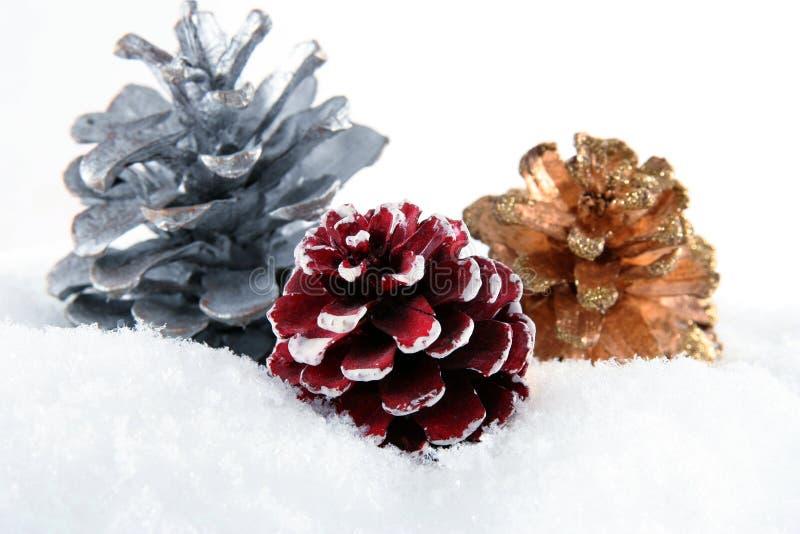 Tre coni su neve bianca fotografie stock