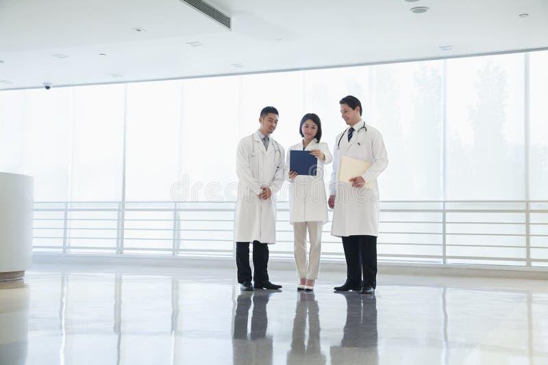 Tre doktorer som ner står och ser på ett dokument i sjukhuset, full längd royaltyfria foton