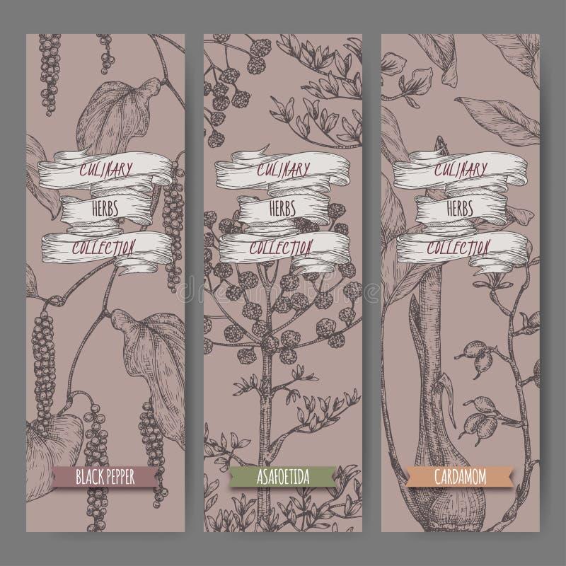 Tre etichette con lo schizzo siriano dell'origano, del sumac e della noce moscata illustrazione di stock