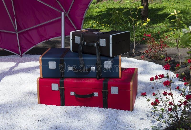 Tre färgade olika formatresväskor i den trädgårds- dekoren arkivfoto