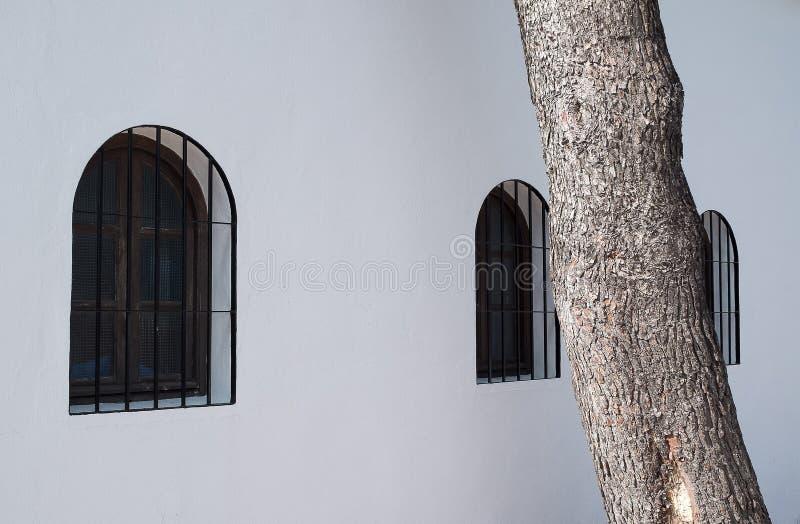 Tre fönster och detalj av träd framme av vit byggnad arkivfoto