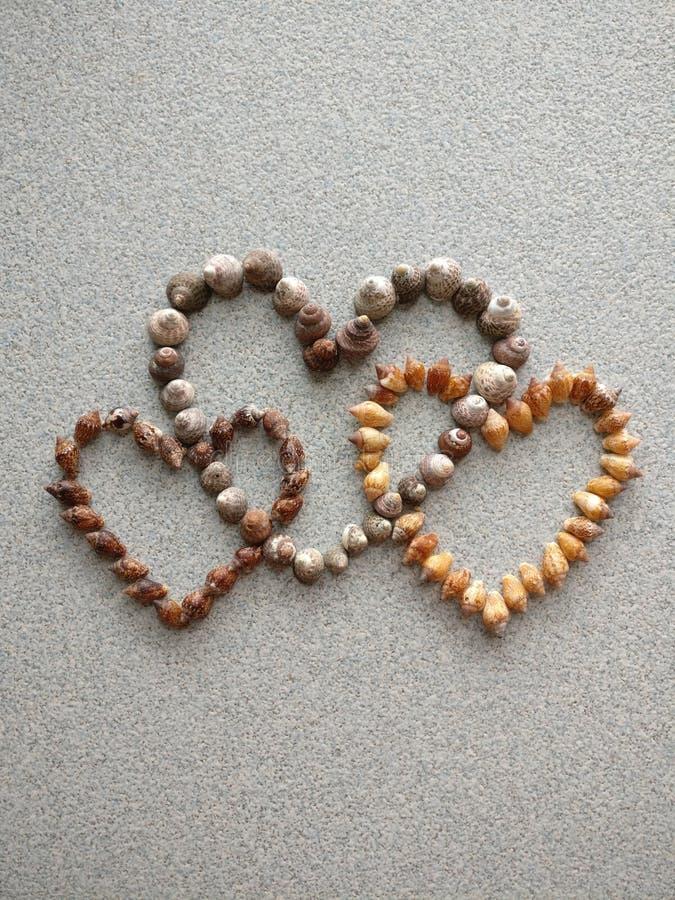 Tre förband hjärtor som skapades med snigelskal som samlades på stranden av Atlanticet Ocean arkivfoton