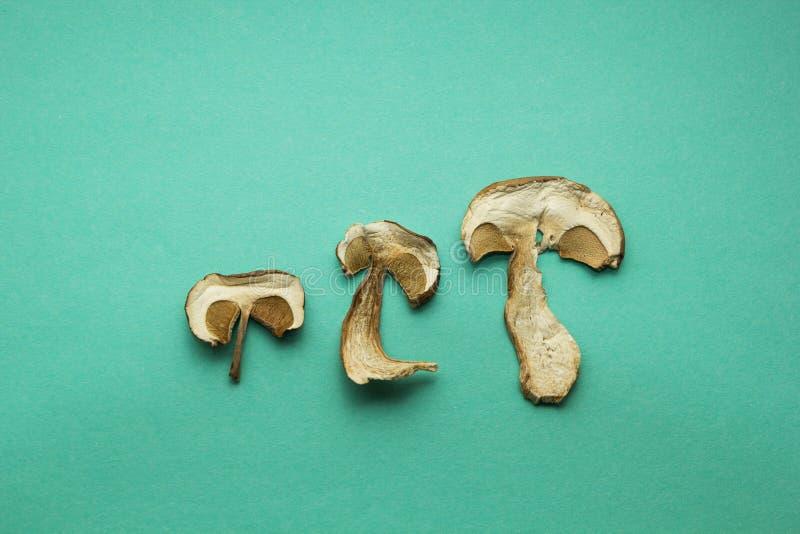 Tre fette di funghi asciutti del boletus su fondo verde immagini stock libere da diritti