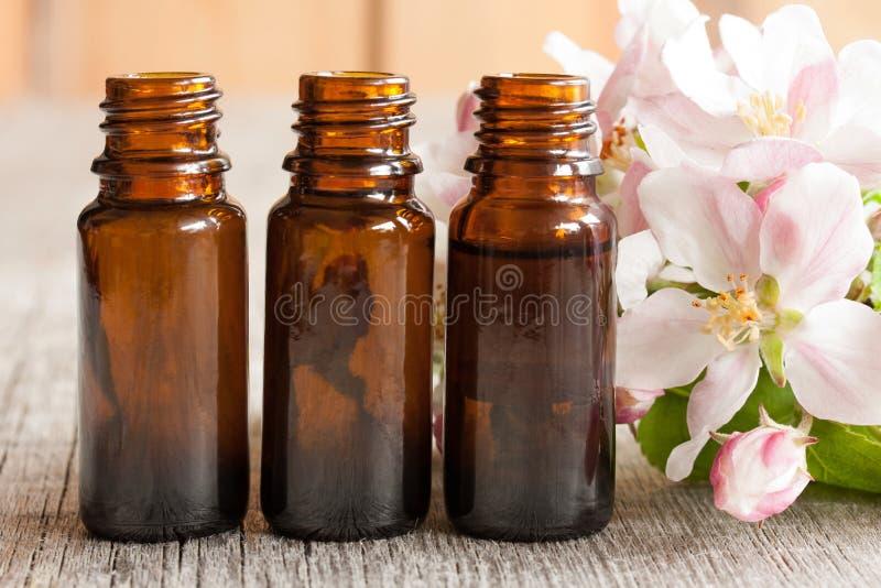 Tre flaskor av nödvändig olja med äppleblomningar royaltyfri foto