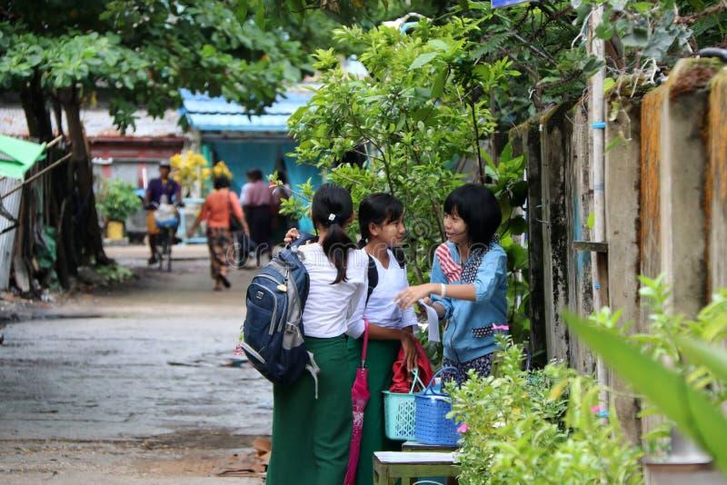 Tre flickastudenter i den Myanmarese likformign av den vita skjortan för skolan och gröna långa Yi diskuterar ämnet av läxa arkivfoton
