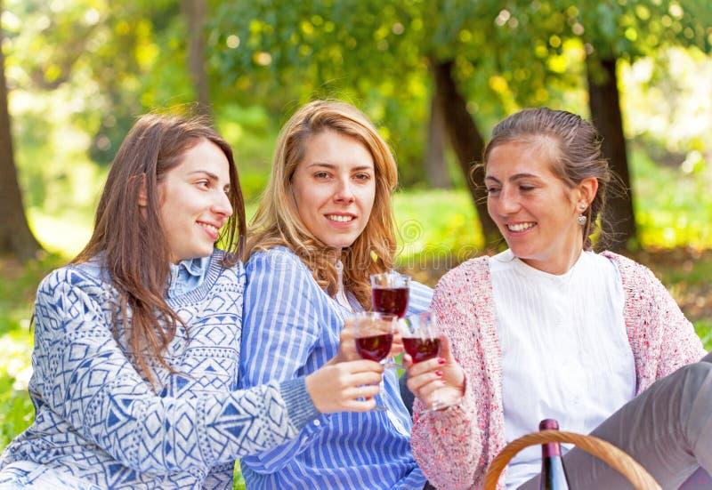 Tre flickvänner som dricker vin royaltyfria bilder