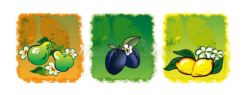 Tre frutta illustrazione di stock