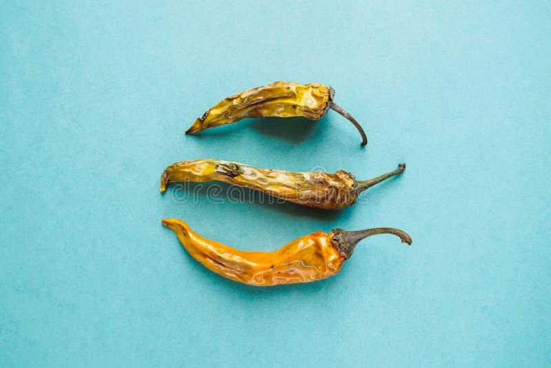 Tre gamla torkade och bortskämda gula peppar på blå bakgrund, bästa sikt royaltyfri fotografi