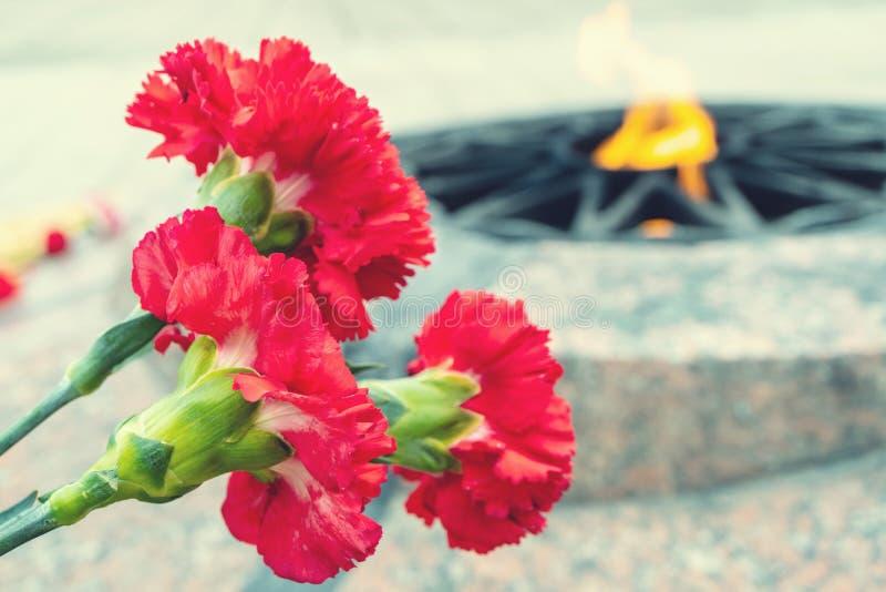 Tre garofani rossi si sono chinati un arco immagini stock
