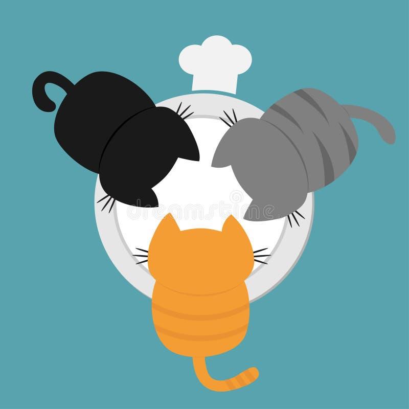 Gattini Che Mangiano Latte Alimentare Dalla Ciotola Del
