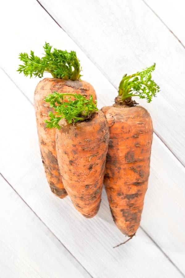 Tre giovani carote fresche con cime su una tavola di legno bianca fotografia stock libera da diritti