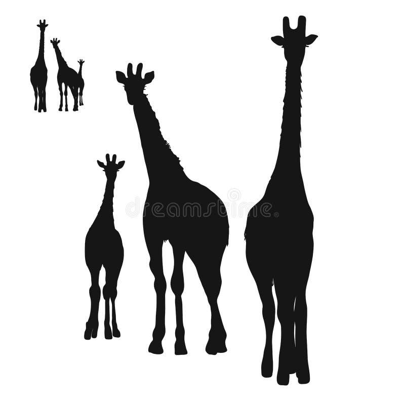 Tre giraffkonturer vektor illustrationer