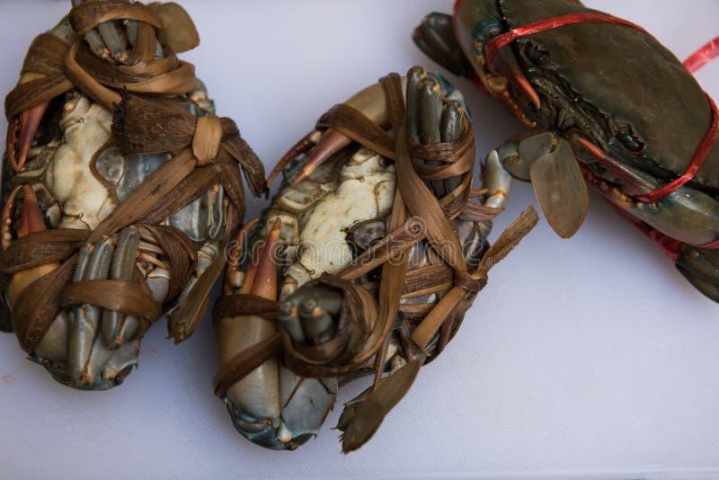 Tre granchi neri femminili prima della cottura immagine stock