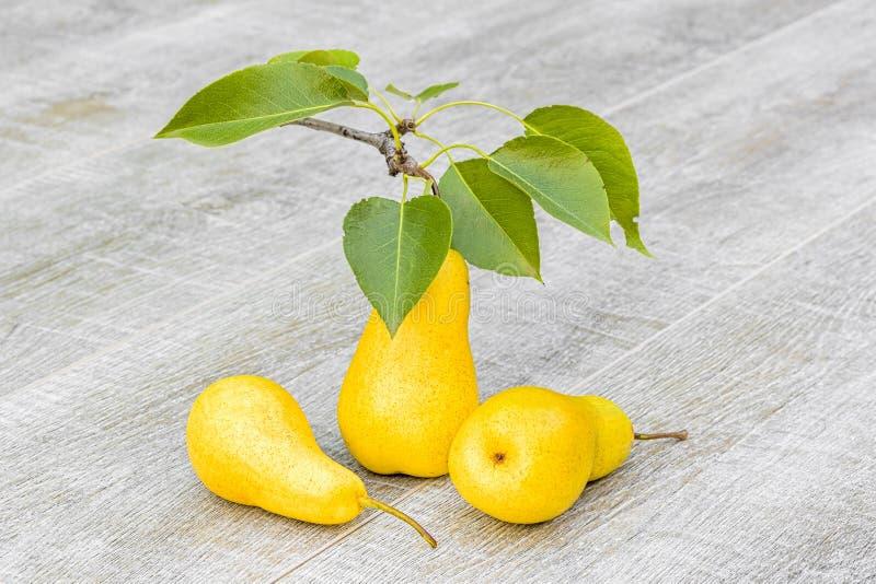 Tre gula päron på grå träbakgrund, närbild arkivbilder