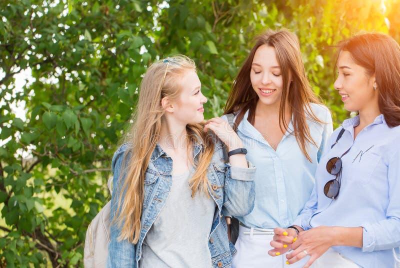 Tre härliga ung flickastudenter som går i parkera, talar och ler mot träden royaltyfri fotografi