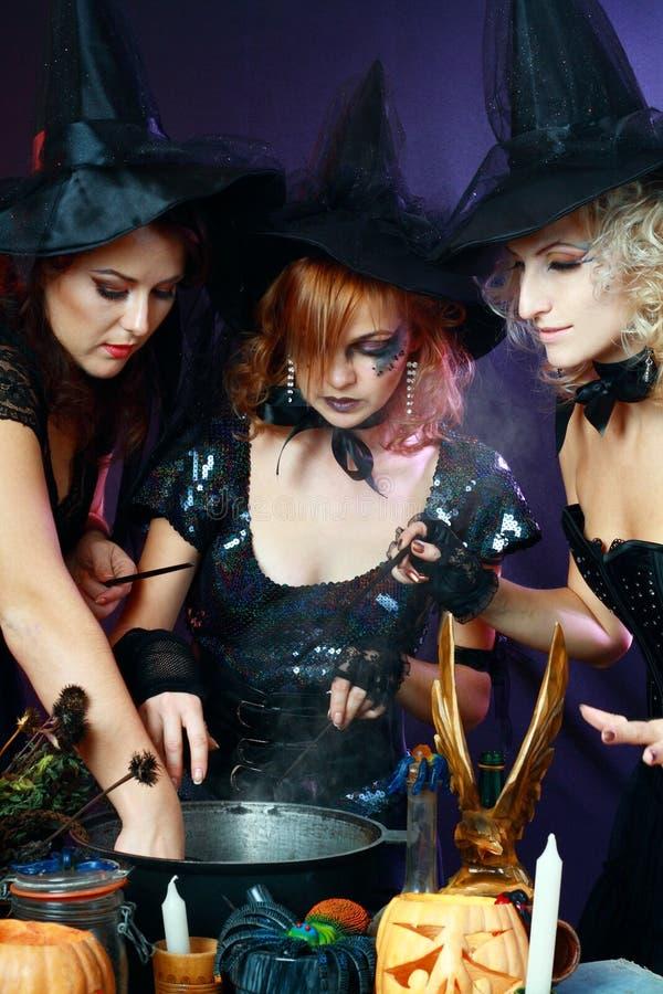 Tre halloween häxor royaltyfri bild