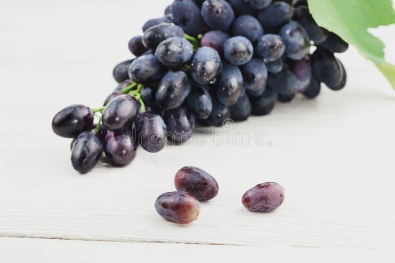 Tre hanno sparso l'uva accanto al mazzo di uva blu matura fresca con la foglia verde sulle vecchie plance bianche di legno fotografia stock libera da diritti