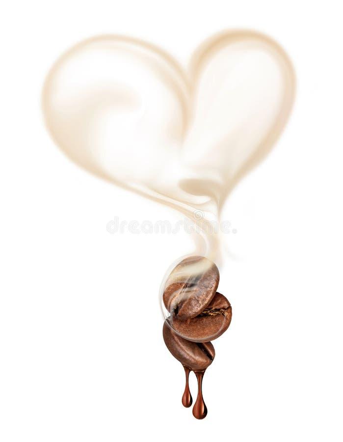 Tre kaffebönor med varm ånga i formen av en hjärta c arkivfoton