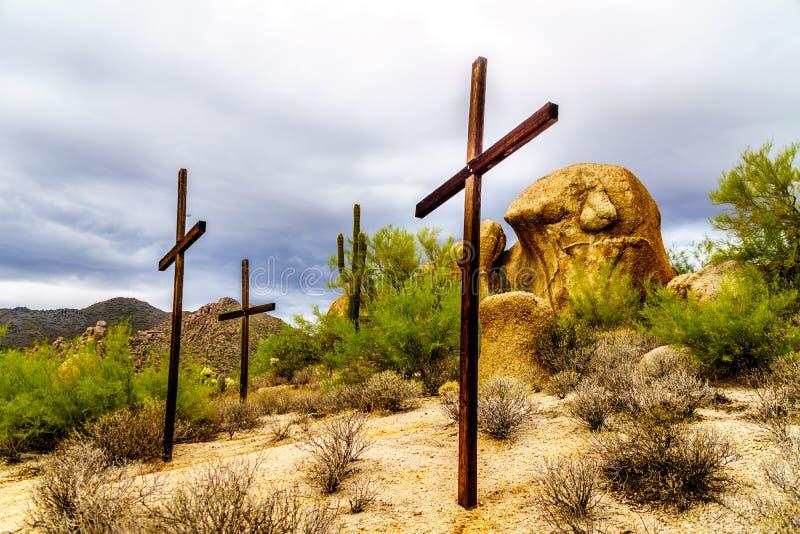 Tre korskakturs, buskar och stora stenblock i Arizona deserterar royaltyfri bild