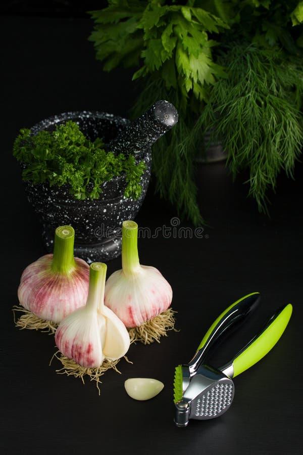 Tre kulor av ung press för vitlök- och kromgräsplanvitlök arkivfoton