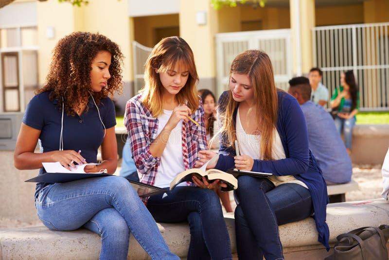 Tre kvinnliga högstadiumstudenter som arbetar på universitetsområde royaltyfria bilder
