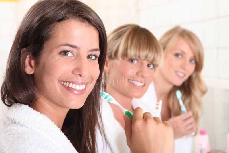 Tre kvinnliga huskompisar royaltyfria foton
