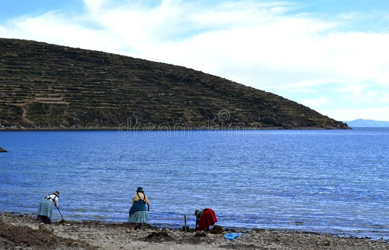 Tre kvinnor som arbetar på Titicaca sjön, Bolivia royaltyfri foto