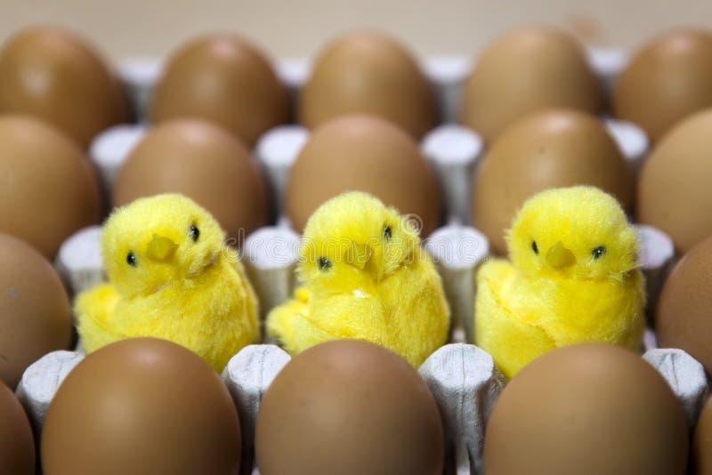 Tre leksakhönor mellan ägg i emballage royaltyfri foto