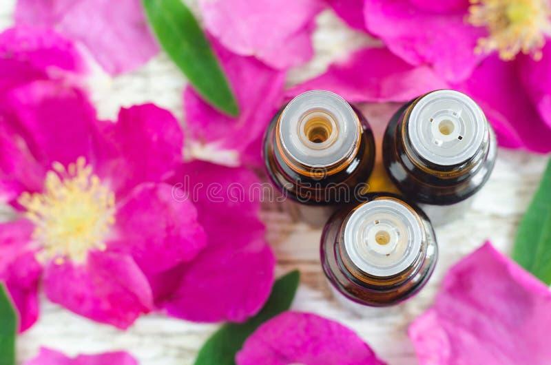 Tre lilla flaskor av nödvändig olja och roskronblad aromatherapy begrepp Bästa sikt, kopieringsutrymme royaltyfria foton