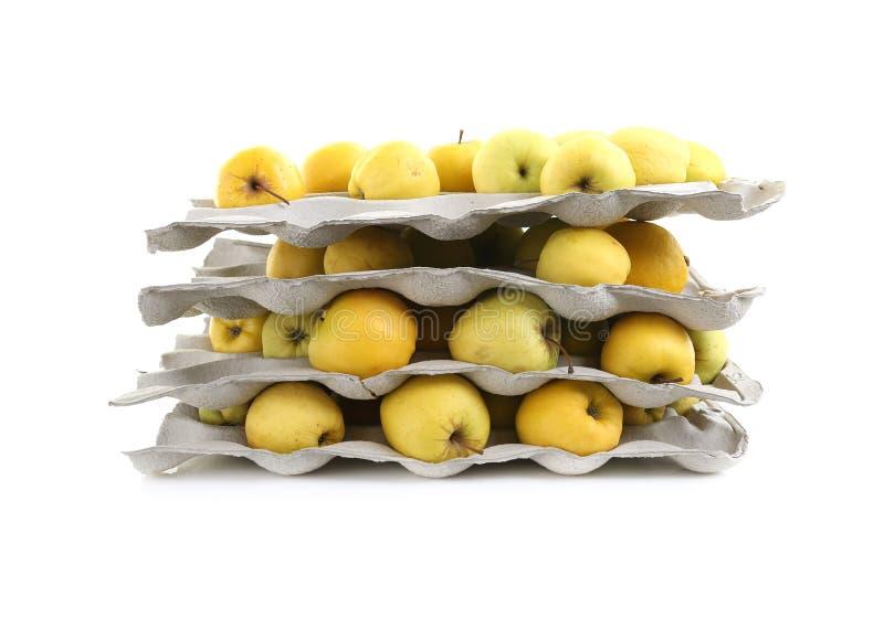 Tre magasin av äpplen royaltyfri bild