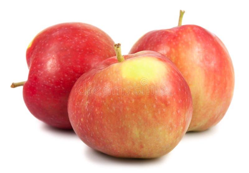 Tre mele mature immagine stock libera da diritti