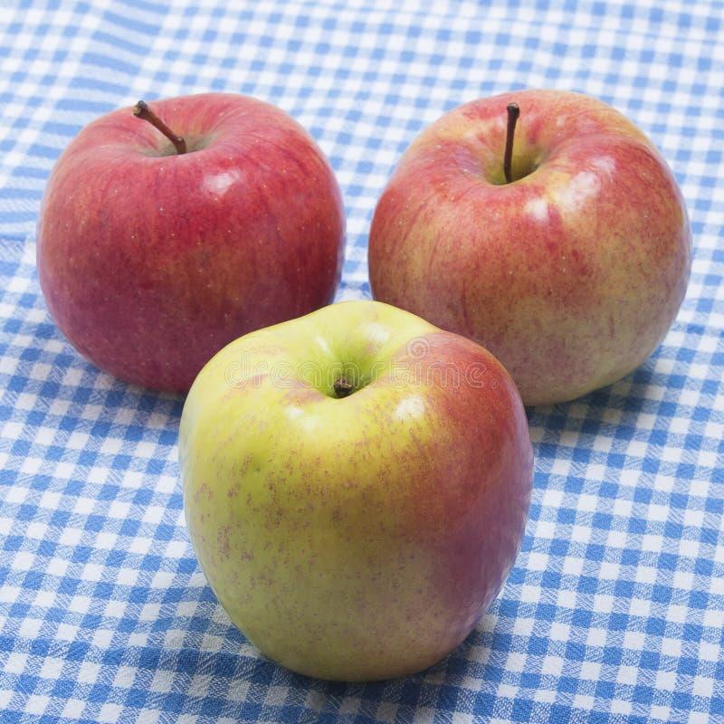 Tre mele mature su un asciugamano di cucina fotografia stock libera da diritti