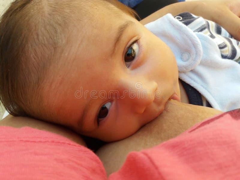 Tre mesi di allattamento al seno del neonato immagini stock