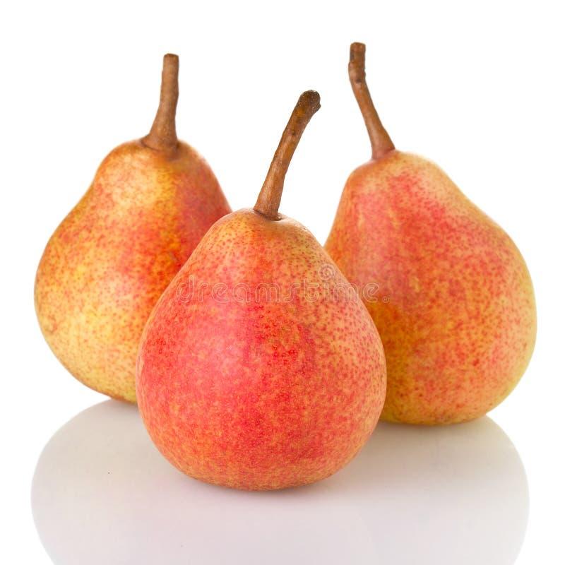 Tre mogna päron royaltyfri bild