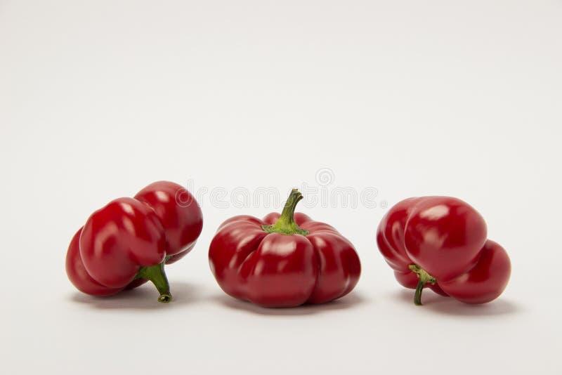 Tre mogna röda söta peppar på en vit bakgrund fotografering för bildbyråer