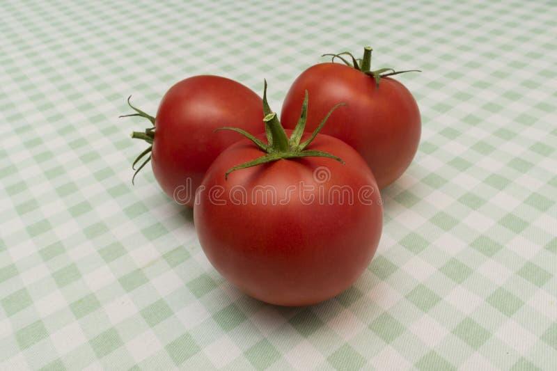 Tre mogna röda tomater på en ljus rutig bordduk royaltyfri fotografi