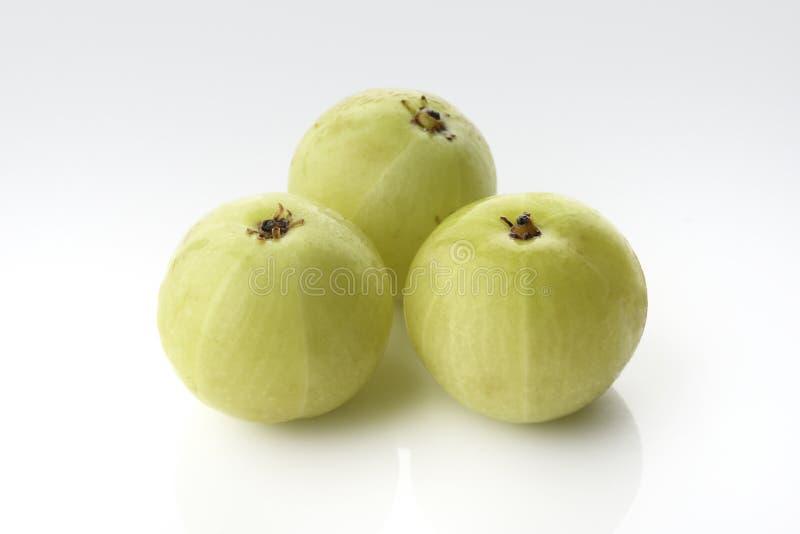 Tre nya gröna krusbär på vit bakgrund royaltyfri fotografi