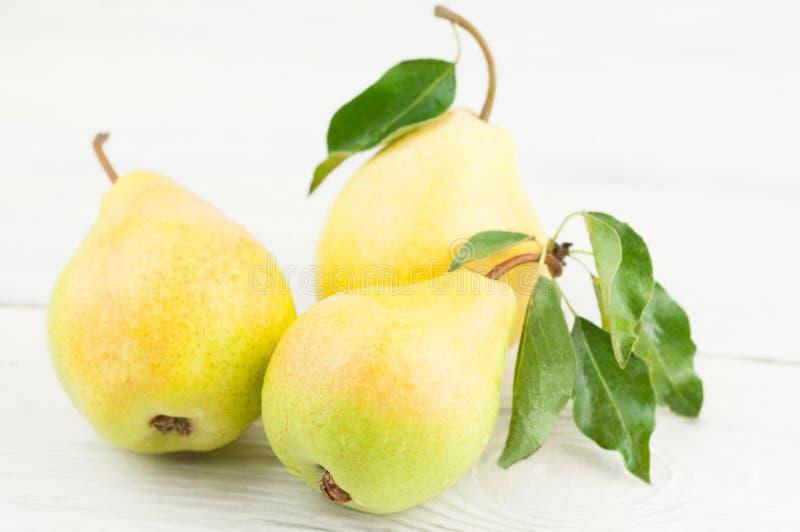 Tre nya hela mogna päron med gröna blad royaltyfria foton
