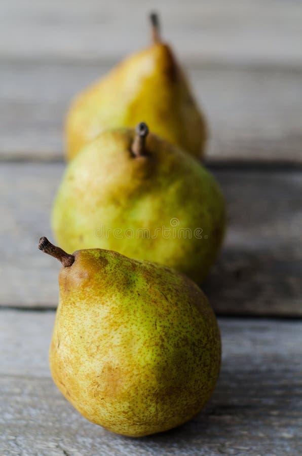 Tre nya mogna päron i rad arkivbild