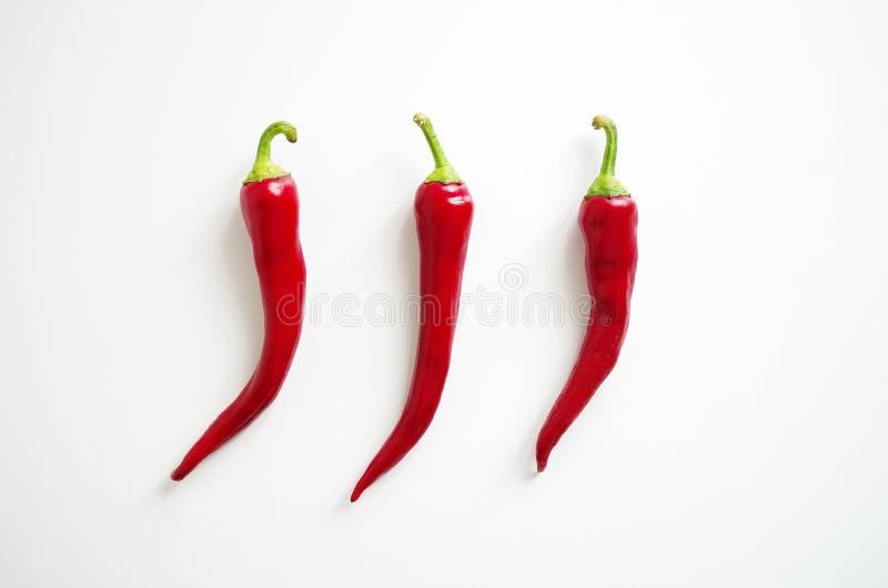 Tre nya peppar för röd chili på vit bakgrund, menydesignbegrepp royaltyfri bild