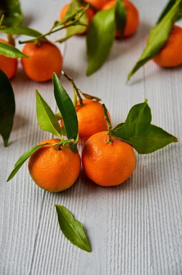 Tre nya tangerin med gröna sidor Saftig mandarinapelsin och tangerinapelsin som skivas på det gråa träbrädet Citrus royaltyfri bild