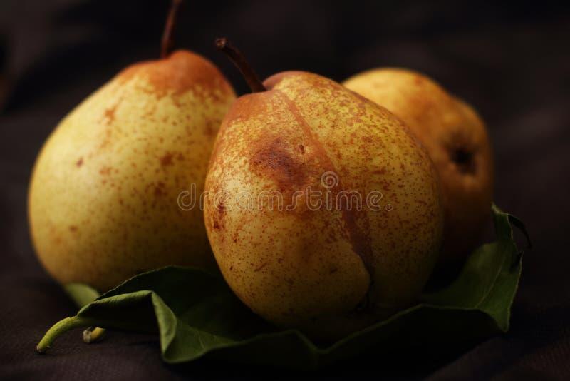 Tre päron på sidor arkivfoton