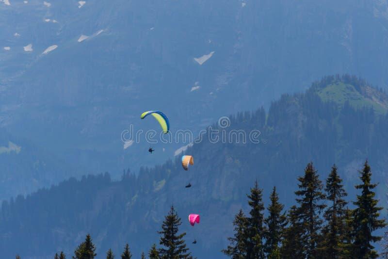 Tre paragliders som flyger i bergen royaltyfria bilder